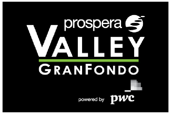 VGF_Logo_Web