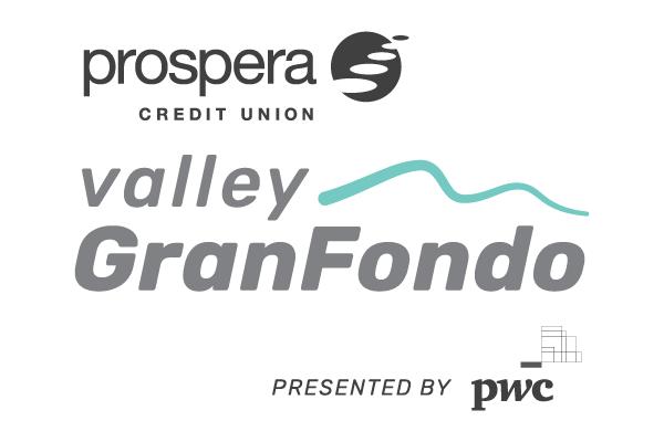 VGF web logo-01